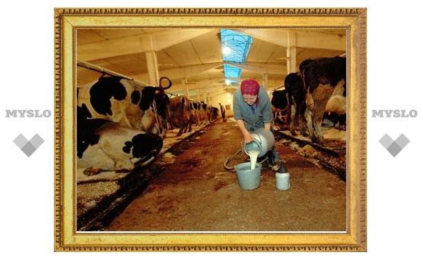 В Туле снизилась эффективность крестьянских хозяйств