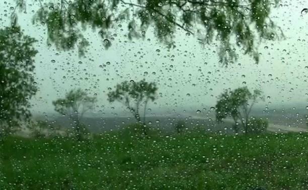Погода в Туле 14 июня: небольшой дождь, до +27, умеренный ветер