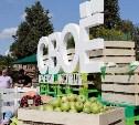 В Туле состоится фестиваль фермерской еды «СВОЁ»