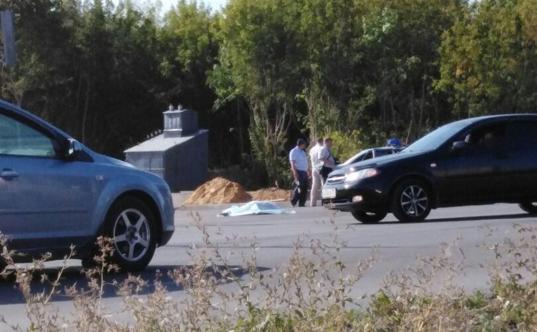 В Новомосковске на улице Мира насмерть сбили 13-летнюю девочку