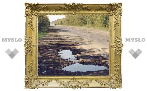 Народный контроль: Когда сделают дорогу «Тула-Белев»?