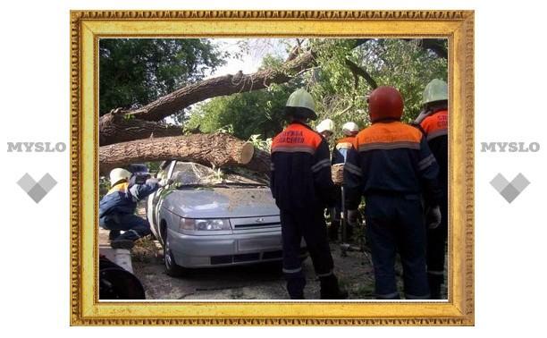 Тульские спасатели устраняли последствия урагана