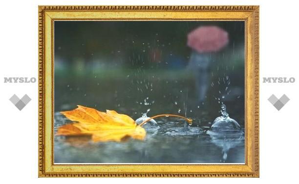 В Туле ожидаются дожди