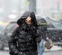 Погода в Туле 5 декабря: мокрый снег и сильный ветер