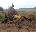 Установлено имя бойца, погибшего у деревни Павловское Ясногорского района