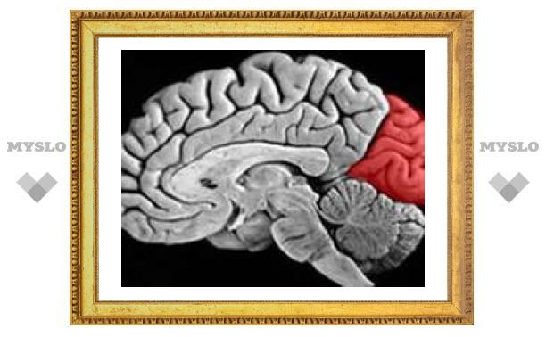Зрительные отделы мозга помогают слепым слышать