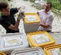 Тульская область отправила в Сирию две тонны цветочного мёда