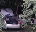На трассе «Крым» водитель Chery погиб, врезавшись в дерево