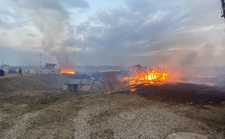 «Этот ужас невозможно было остановить»: из-за пала травы в Туле сгорела площадка пейнтбольного клуба