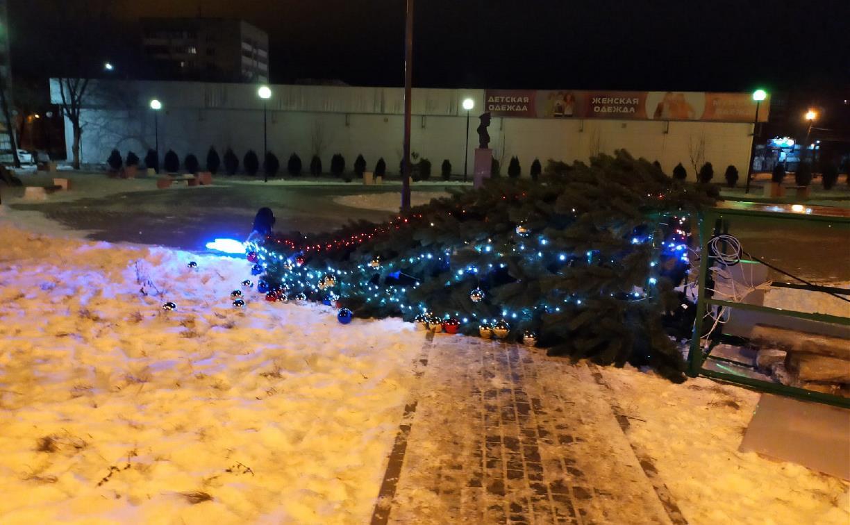 В Новомосковске упала новогодняя елка
