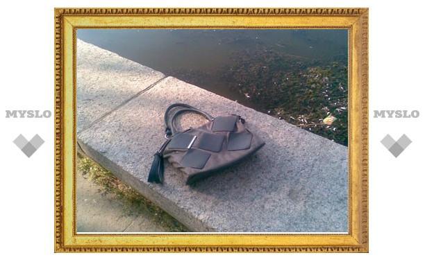 В Одоеве поймали пляжного воришку