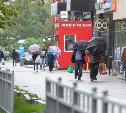 Погода в Туле 29 мая: дождливо, ветрено и до +25