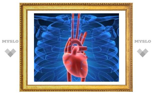 Сердце способно регенерировать клетки