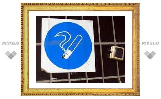 В Госдуму внесен шестой по счету закон об ограничении курени