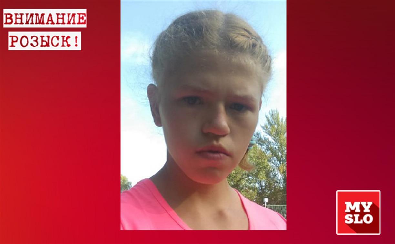 В Тульской области разыскивают пропавшую 13-летнюю девочку