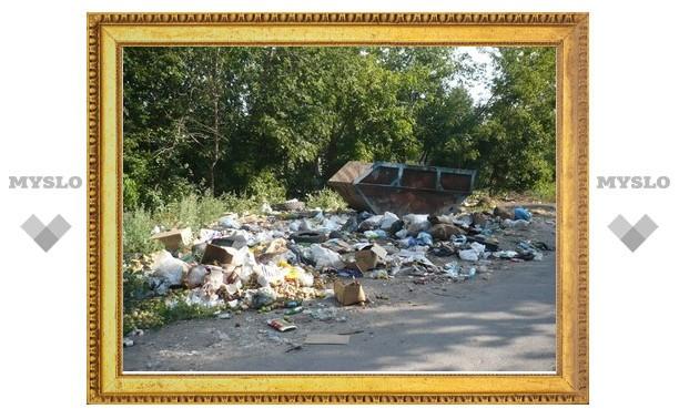 В Туле установят камеры на мусорных площадках?