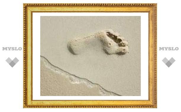 В египетском оазисе нашли древнейший отпечаток ступни