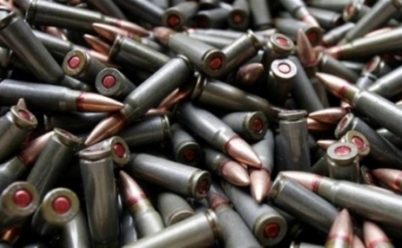 Житель Новомосковска почти 15 лет незаконно хранил боеприпасы