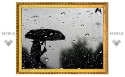 С понедельника в Туле начнутся дожди