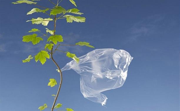 25 августа Тула откажется от пластиковых пакетов