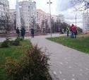 В Советском районе посадили деревья