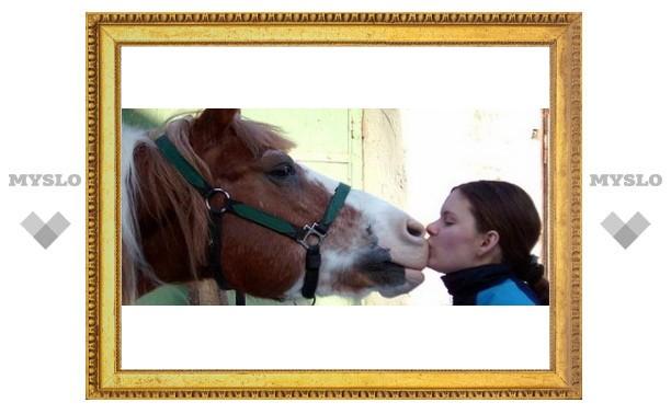 В Кимовске пройдет соревнование конюхов