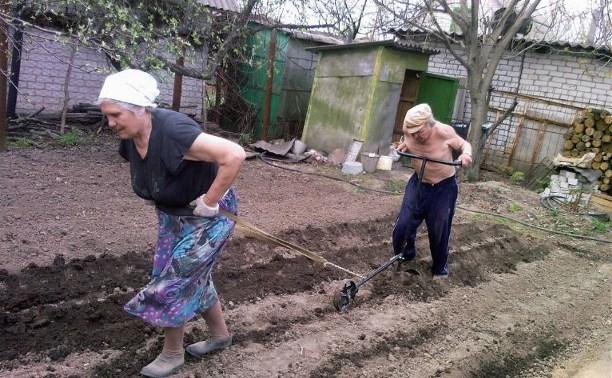 В России предлагают исключить владельцев огородов и свободного жилья из числа бедных