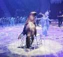 В тульском цирке открылось «Шоу волшебных фонтанов»