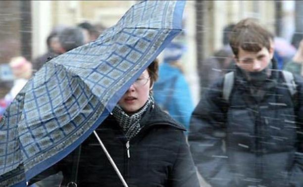 В Тульской области прогнозируют резкое усиление ветра