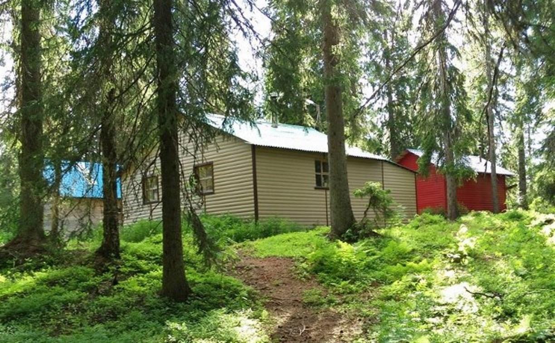 Ответчики попросили дать больше времени на снос построек в яснополянском лесу