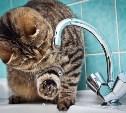 23 сентября в Заречье отключат холодную воду