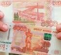 В Тульской области обнаружены фальшивые доллары и рубли
