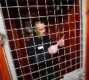 Минюст предлагает оплачивать из бюджета письма с жалобами от заключенных