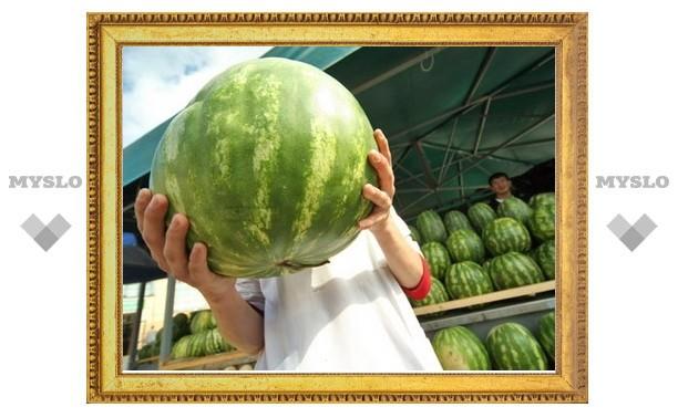 В Туле стартовал сезон арбузов