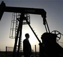 Тульская область принимает участие в Мировом нефтяном конгрессе