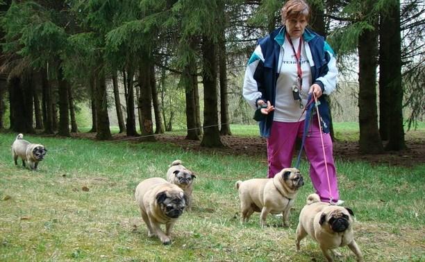 Собаководам в России придётся платить за питомцев