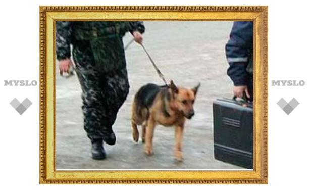 В Киреевске сообщили о минировании тульской автомойки