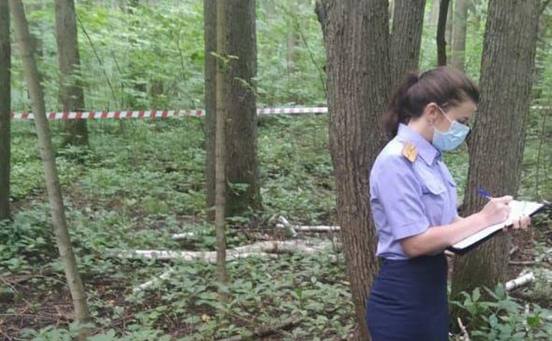В лесу под Богородицком нашли привязанный скотчем к дереву труп мужчины