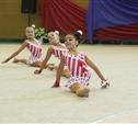 В Туле появятся мини-школы бокса и художественной гимнастики