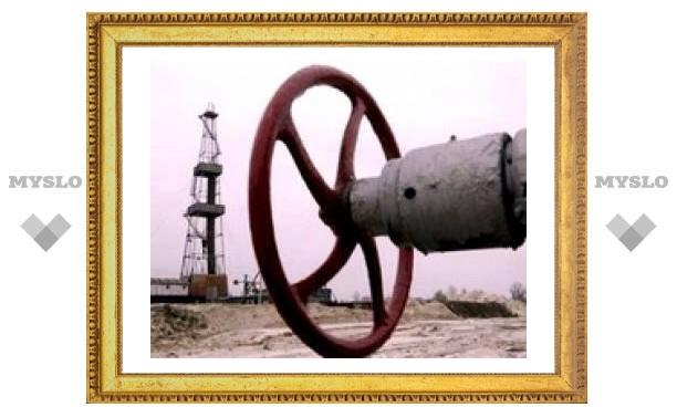 Ющенко призывает спонсировать антироссийские энергетические проекты