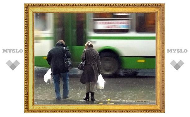 В пассажирский транспорт Тулы вложат 422 миллиона рублей