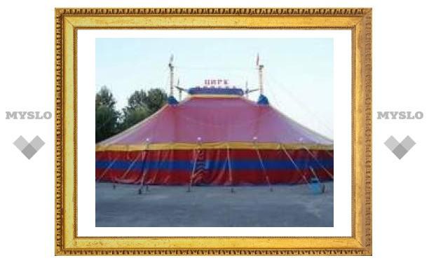 Цирк шапито приехал в Тульскую область
