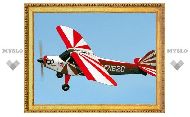 В тульское небо запустят модели самолетов и вертолетов