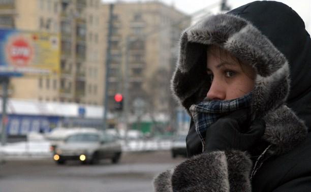 Погода в Туле 5 февраля: без осадков, морозно и ветрено