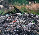 Счетная палата России назвала «мусорную реформу» безуспешной