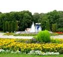 Тульские парки готовы к летнему сезону