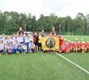 Алексинская «Ока» выиграла региональный футбольный турнир