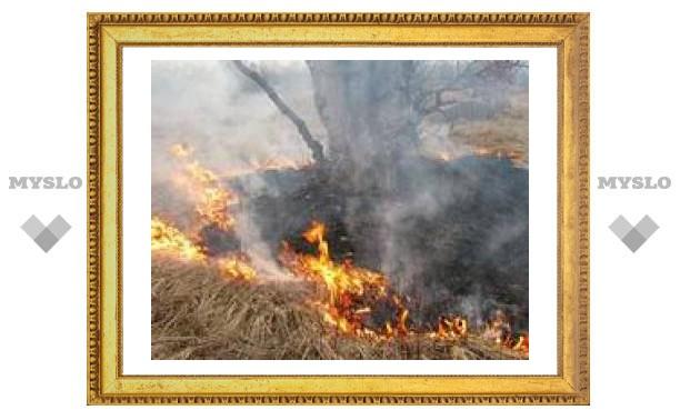 Под Тулой два человека сгорели из-за сухой травы
