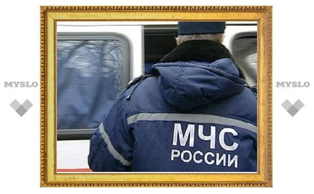 О падении воздушного судна под Тулой сообщила жительница Богородицка