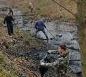 В Туле очистили русло реки Рогожня